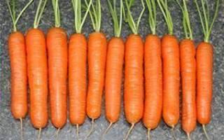 Как посадить морковь чтобы быстро взошла, сколько дней + видео