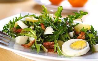 Салат из одуванчиков — польза и вред, рецепты приготовления, видео