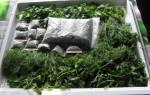 Как заморозить зелень на зиму, три способа заготовки