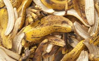 Как сделать удобрение из банановой кожуры для цветов, видео