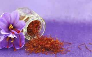 Полезные свойства шафрана — применение в медицине, видео