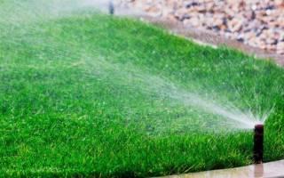 Как выбрать поливочную систему для газона, видео