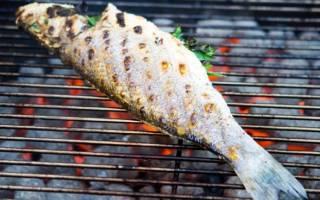 Сколько жарить рыбу на гриле, рекомендации по приготовлению