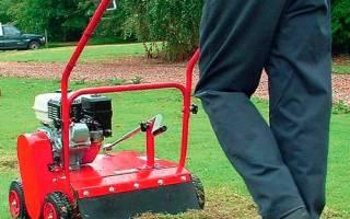 Что такое вертикуттер для газона, как выбрать и для чего нужен