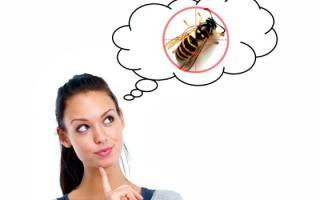 Как избавиться от ос народными средствами и инсектицидами, видео