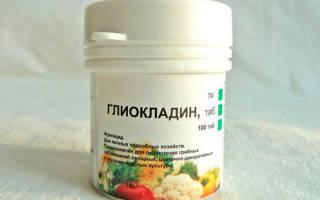 Таблетки Глиокладин против болезней рассады, видео