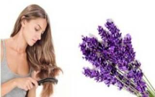 Масло лаванды — свойства и применение для волос, лица, рекомендации, видео