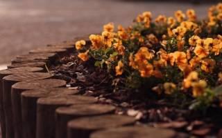 Как сделать красивый заборчик для клумбы и цветника — видео, фото