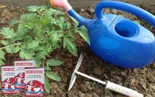 Дрожжи как удобрение для овощей — как подкормить рассаду, видео