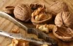 Скорлупа грецкого ореха — лечебные свойства, применение отвара и настойки от зубного камня, видео