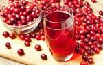 Компот из клюквы на зиму — рецепты со свежей и замороженной клюквы, с добавлением яблок и брусники, видео