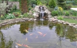 Какие бывают водоемы, природные и искусственные виды, видео