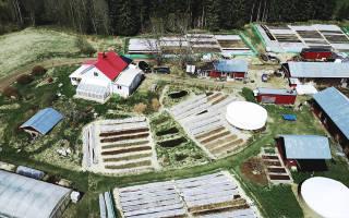 Пермакультура на садовом участке — что это такое, как организовать