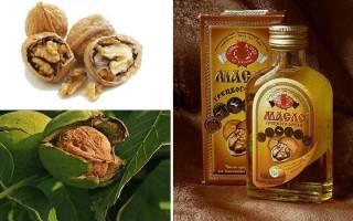 Масло грецкого ореха — полезные свойства и противопоказания, применение для волос, лица, в косметологии, для похудения, видео