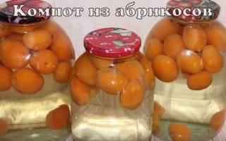 Компот из абрикосов на зиму — простой рецепт, приготовление без стерилизации, с косточками и без, видео