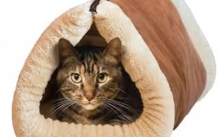 Домик для кошки своими руками, виды конструкций, выбор материала