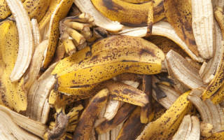 Удобрение из банановой кожуры для томатов и огурцов, видео