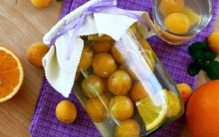 Компот из абрикос и апельсина на зиму — рецепты напитка с добавлением лимона, видео