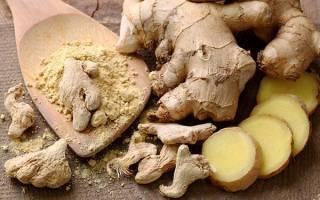 Имбирь — как и с чем употреблять корень, от чего едят и лечебные свойства имбиря, рецепты, видео