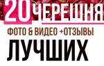 Черешня Ленинградская черная — описание сорта, опылители, посадка и уход, отзывы дачников, фото, видео