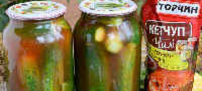 Огурцы в томатном соусе на зиму — рецепты приготовления маринованных, резанных огурцов, видео