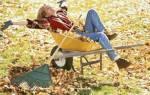 Осенние работы на даче — сбор урожая, рыхление почвы, посадка саженцев и овощей под зиму, видео