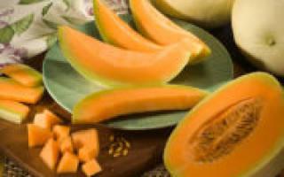 Цукаты из дыни на зиму в домашних условиях, рецепты с фото, как приготовить, видео