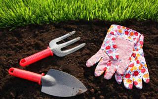 Удобрение для газона — весной, удобрение Фертика, чем удобрять, видео