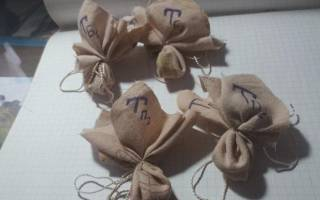 Выращивание и уход за черешковым сельдереем — посев семян, видео