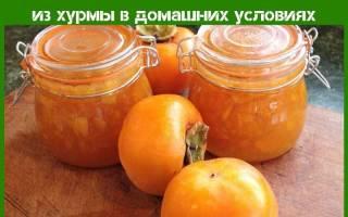 Самый вкусный рецепт варенья из хурмы с лимоном, коньяком, фото