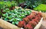 Как сделать грядки на огороде без досок, видео