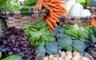 Август на грядках — сбор урожая овощей, работа в теплице, видео