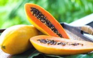Полезные свойства папайи для организма, противопоказания к приему