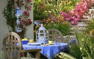 Цветы на даче — каталог и фото цветов, какие растения выбрать