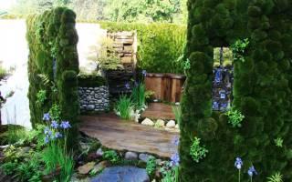 Вертикальное озеленение — виды, системы, выбор конструкций