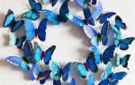 Бабочки из бумаги — как сделать, трафарет для вырезания, шаблоны для распечатки, видео