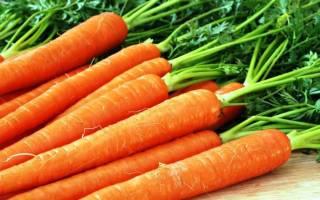 Народные средства для удобрения моркови, видео