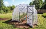 Обработка теплицы медным купоросом весной, как обработать землю, как развести раствор, видео