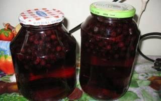 Компот из черноплодной рябины на зиму, компот из красной рябины на зиму, рецепты со сливой, яблоками, видео