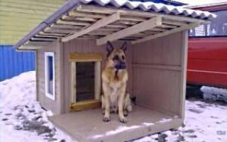 Обогреватель для собачьей будки — самодельный, видео