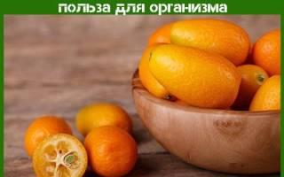 Кумкват — что за фрукт, польза и вред вяленного, сушеного, видео