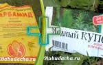 Весенняя обработка сада мочевиной с медным купоросом, сроки опрыскивания, видео