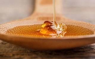 Мед натуральный — как отличить от фальсификата, простые доступные способы, видео