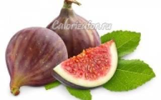 Полезные свойства инжира для организма, калорийность, рецепты