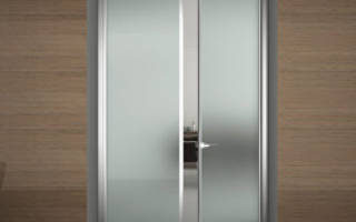 Межкомнатные стеклянные двери — виды, особенность установки, видео