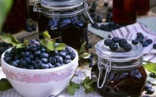 Заготовка черники на зиму — варенья, компоты, заморозка, видео