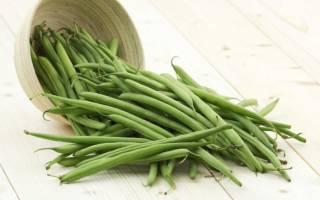 Спаржевая фасоль — выращивание и уход, как прорастить, уборка урожая, видео
