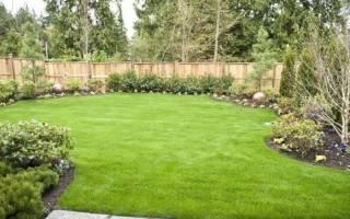 Газон своими руками, как сделать газон на даче, посадка весной, как посеять, поэтапное фото, видео