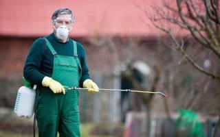 Инсектициды системного действия для плодовых деревьев, видео