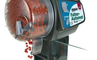 Автоматическая кормушка для рыб сделанная своими руками, видео
